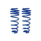 2005-2014 Mustang GT Roush Rear Coil Springs - Pair