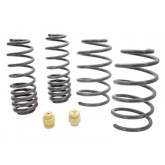 2005-2010 Mustang Roush Extreme Lowering Spring Kit